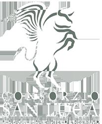 Consorzio San Luca